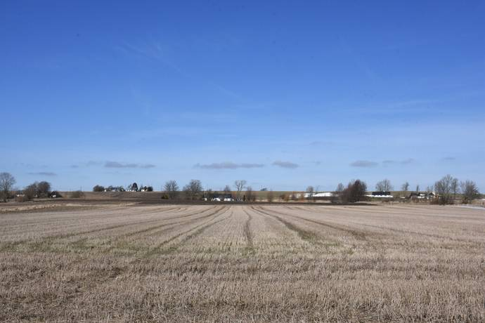 Bild: gård/skog på Åkermark i Borrby, Simrishamns kommun