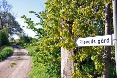 Bild: gård/skog på Hyby Kyrkoväg 182-54, Svedala kommun Hyby