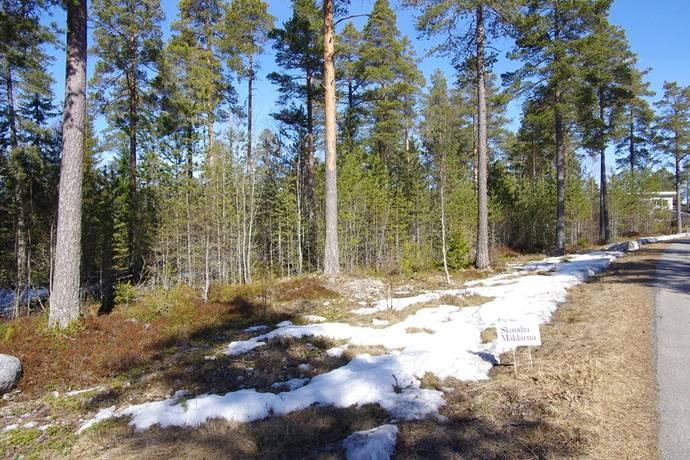 Bild: tomt på Golfallén 6, Umeå kommun Norrmjöle