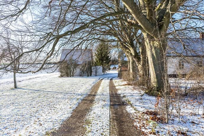 Bild: gård/skog på Ådala gård, Eslövs kommun Gårdsstånga