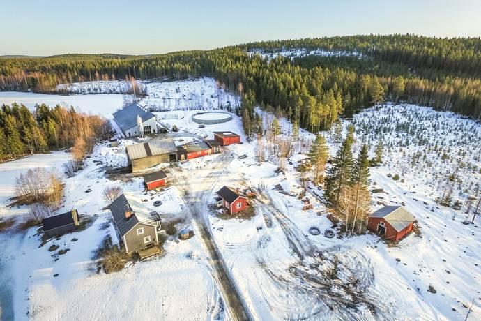 Bild: gård/skog på Brönstjärn 38, Skellefteå kommun Brönstjärn