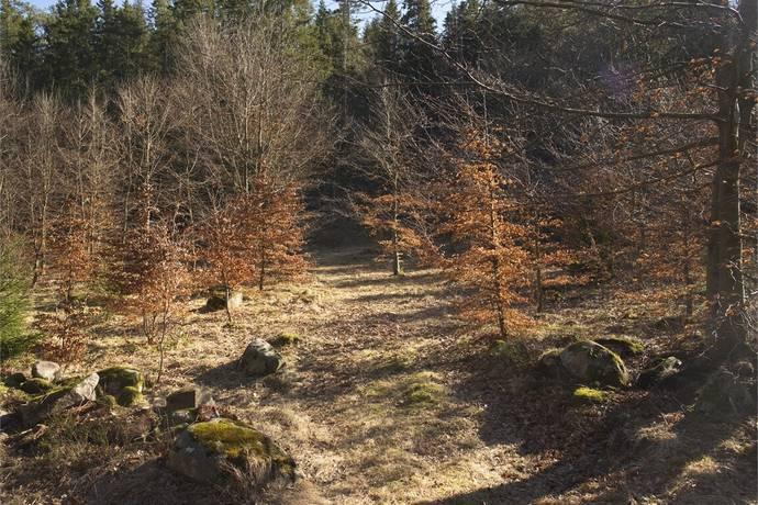Bild: tomt på Berghogen 665, Uddevalla kommun Bokenäs