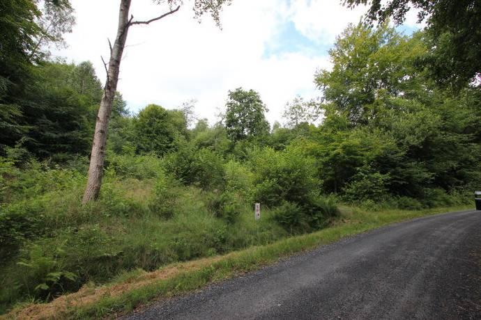 Bild: tomt på Fältspatsvägen 6, Sölvesborgs kommun Ryssbergets Fritidsområde