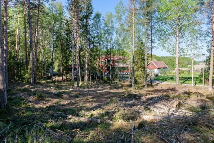 Bild: tomt på Skäggesta Gullboda 420, Uppsala kommun Börje/Skäggesta