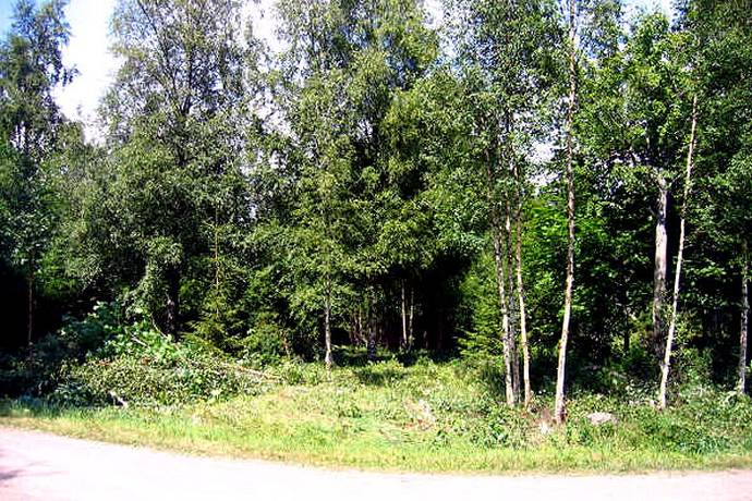 Bild: tomt på Tjädervägen 9, 544 92 Hjo, Hjo kommun Långeruder Hjo Västergötland