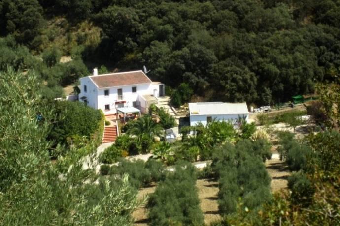Bild: 3 rum övrigt på Country House, Cordoba, ES, Spanien Cordoba