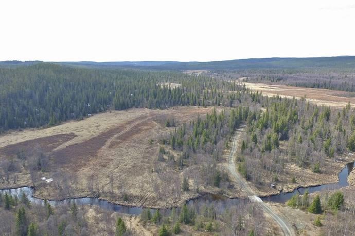 Bild: gård/skog på Järp-storvallen 110, Åre kommun