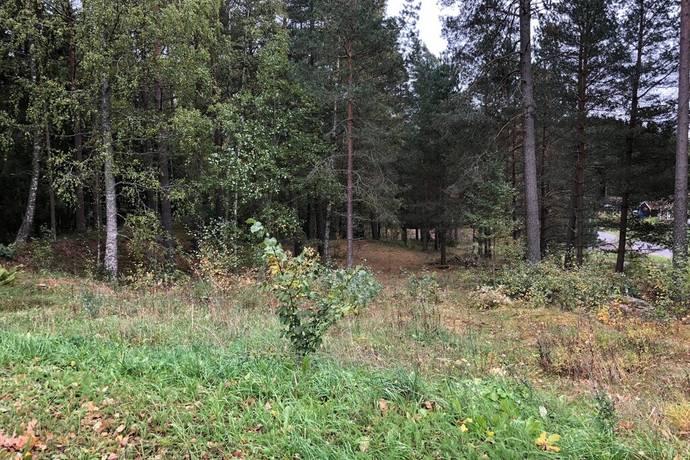 Bild: tomt på Tallhöjdsvägen 14, Tidaholms kommun