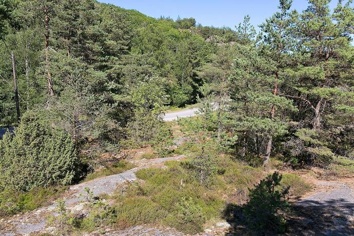 Bild: tomt på Västra Mjörnvägen 9, Tjörns kommun Mjörn