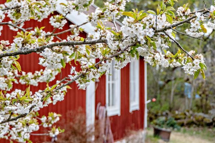 Bild: 2 rum fritidshus på Björnfoten 62, Södertälje kommun Sandviken