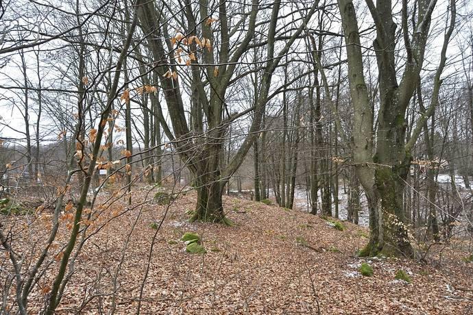 Bild: tomt på Långstorp 204, Höörs kommun Långstorp