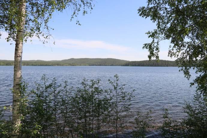 Bild: tomt på Skogstomt, Leksands kommun Brossen