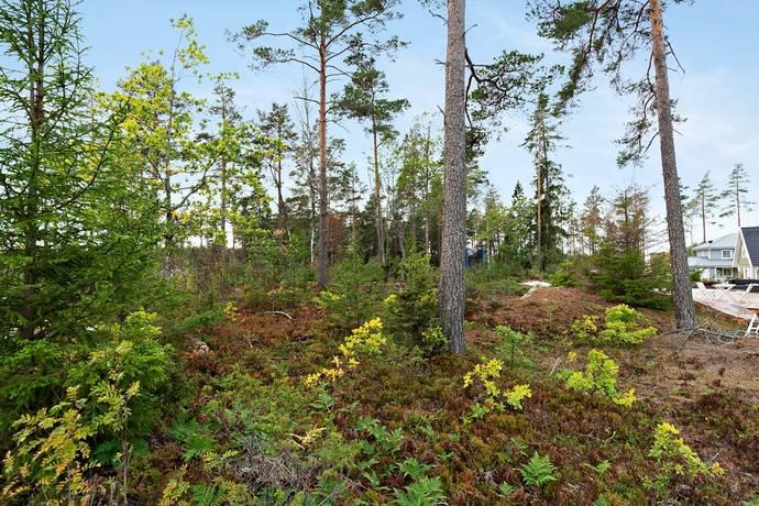 Bild: tomt på Brandvaktsvägen 56, Norrtälje kommun