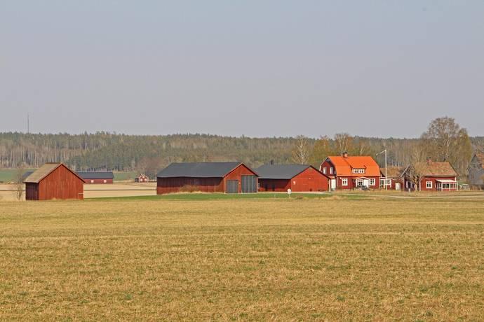 Bild: gård/skog på Skålby gård, Västerås kommun