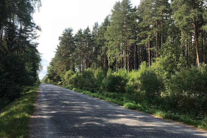 Bild: tomt på Angskärsvägen  Norrtälje, Norrtälje kommun