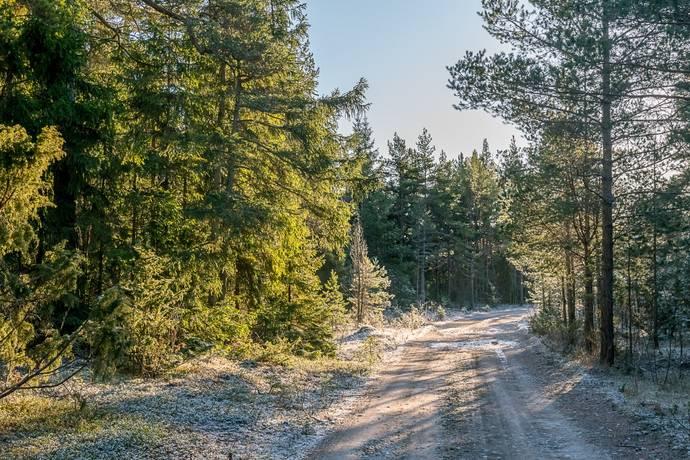 Bild: 0 rum tomt på Gothem Nybingels 591, Gotlands kommun Gothem hammar