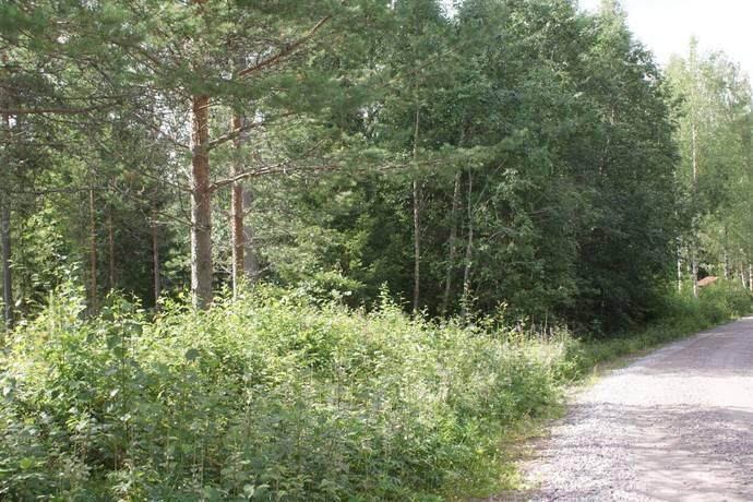 Bild: tomt på Norra Tansen, Gagnefs kommun Mockfjärd