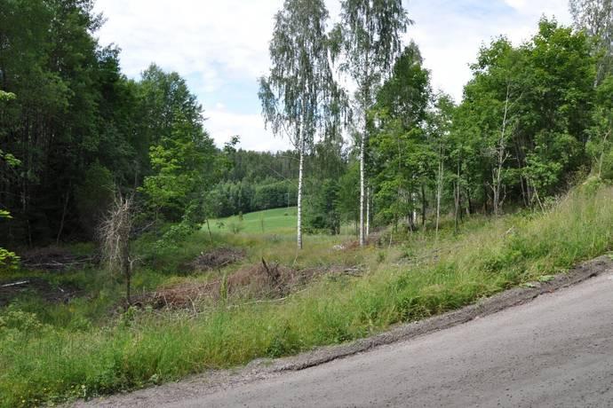 Bild: tomt på Hän, Årjängs kommun Holmedal