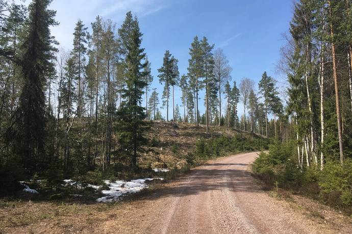 Bild: gård/skog på Vinäs 128:1, Mora kommun