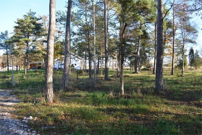 Bild: tomt på Lokrume Nyplings 335F, Gotlands kommun