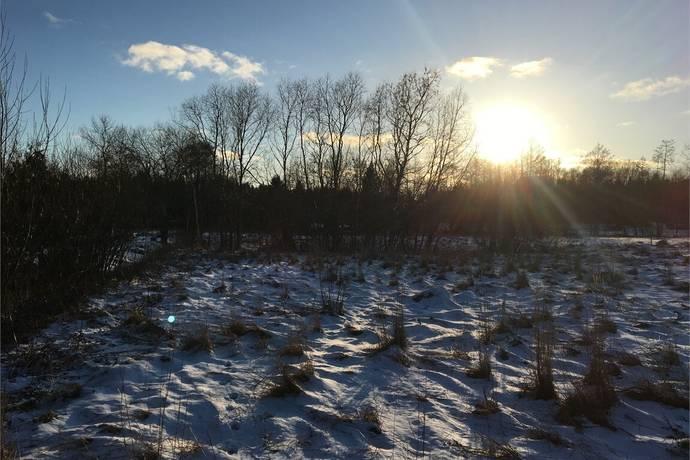 Bild: tomt på Solbacksvägen 5, Norrtälje kommun Rådmansö
