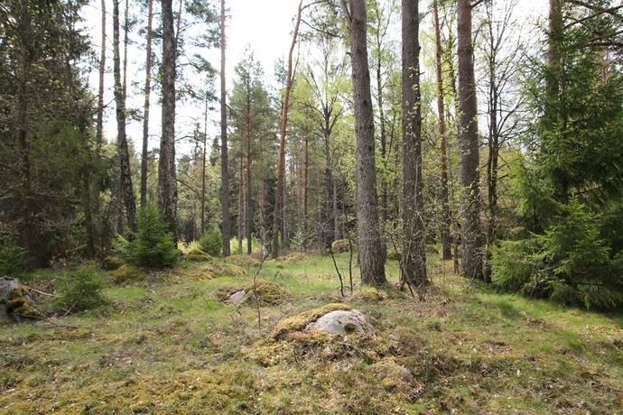 Bild: tomt på Hemmingsmåla, Tingsryds kommun Hemmingsmåla