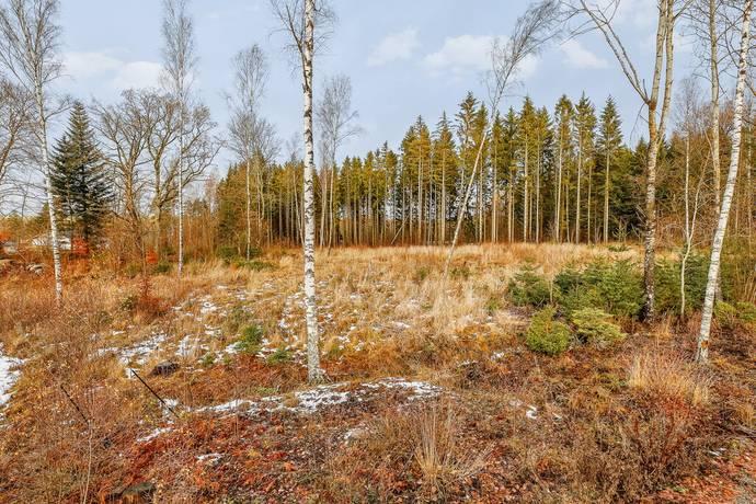 Bild: tomt på Stämsvik 1:43, Håbo kommun Stämsvik