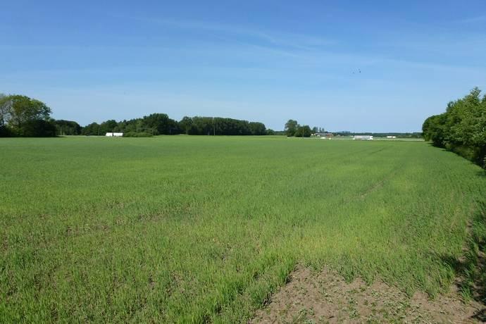 Bild: gård/skog på Strahlavägen, Ängelholms kommun