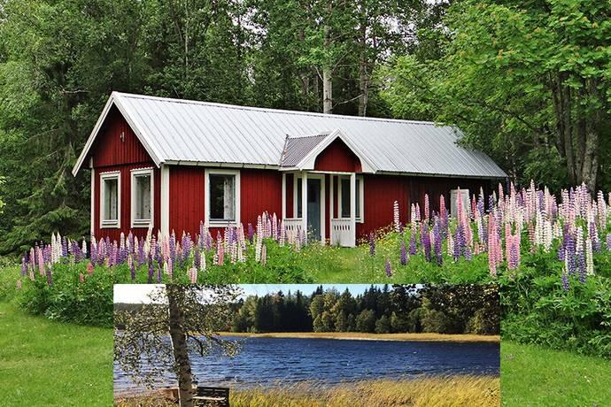 Bild: 2 rum fritidshus på Öje 750, Härnösands kommun Sundsvall, Höga kusten