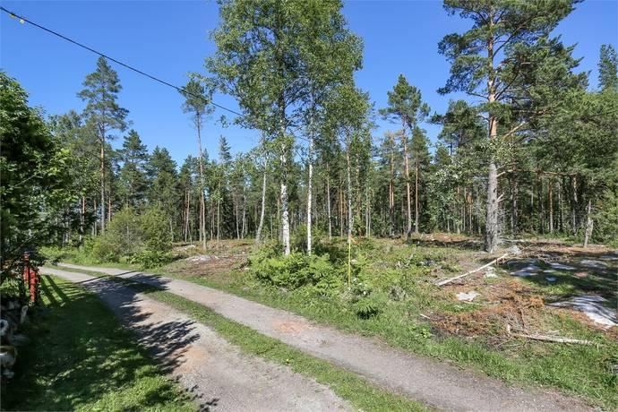 Bild: tomt på Söderby tomt 1, Östhammars kommun
