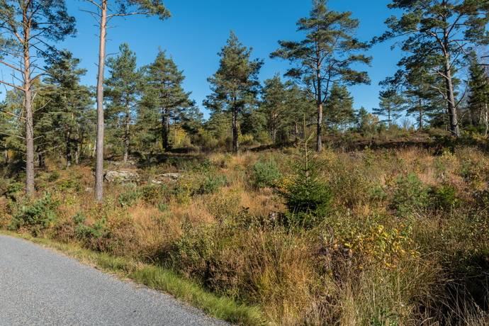 Bild: tomt på Järnblästen, Stenungsunds kommun Ödsmål