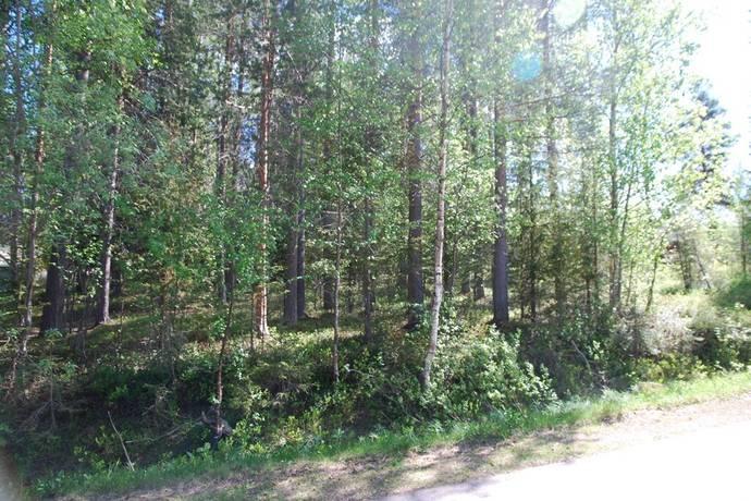 Bild: tomt på Smedsvägen  7, Arvidsjaurs kommun