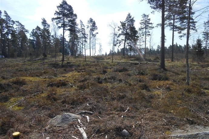 Bild: tomt på Förängsudden 225a, Norrtälje kommun Blidö