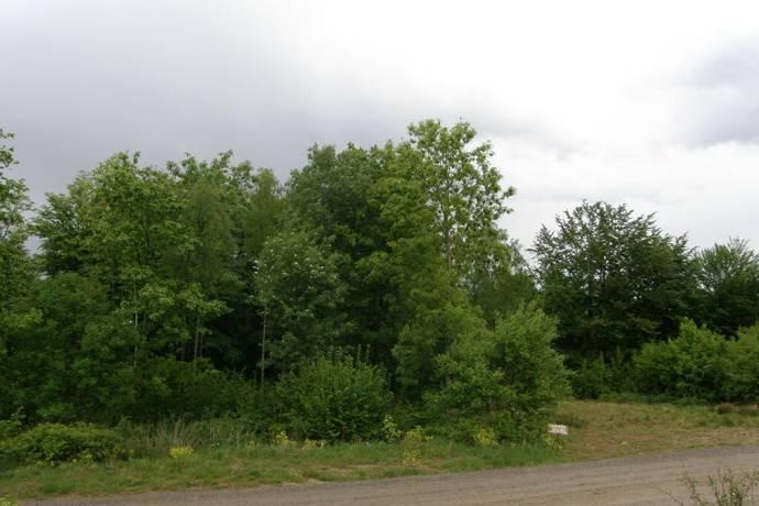 Bild: tomt på Spiltvägen 19, Hässleholms kommun Skyrup