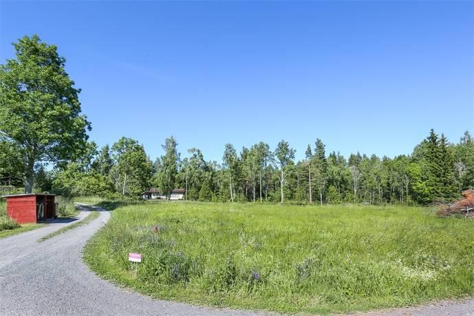 Bild: tomt på Söderby tomt 2, Östhammars kommun