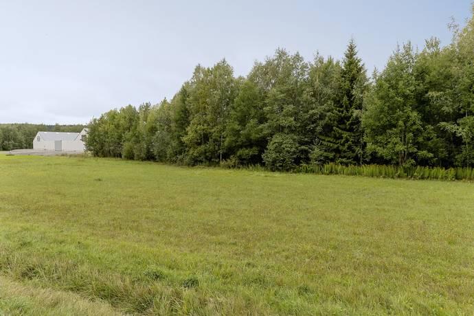 Bild: tomt, Lindesbergs kommun