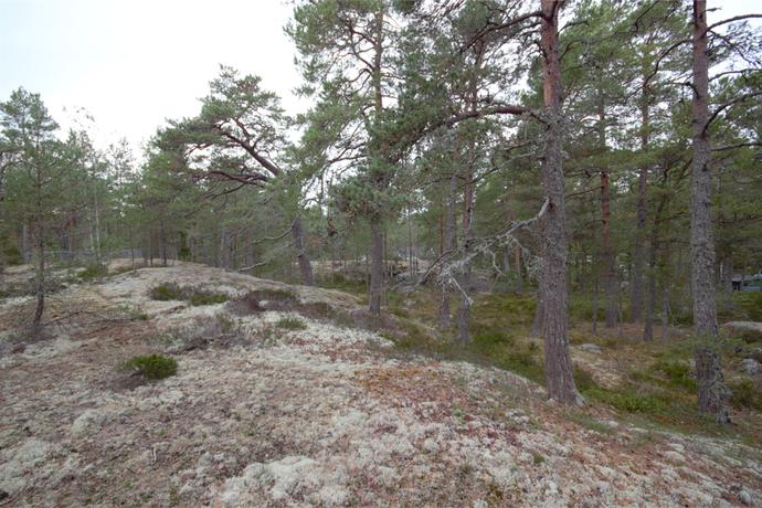 Bild: tomt på Tallstigen 5, Värmdö kommun Stavsnäs - Hölö