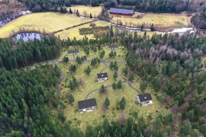 Bild från Hyssna - Surtandalen Björkbacken