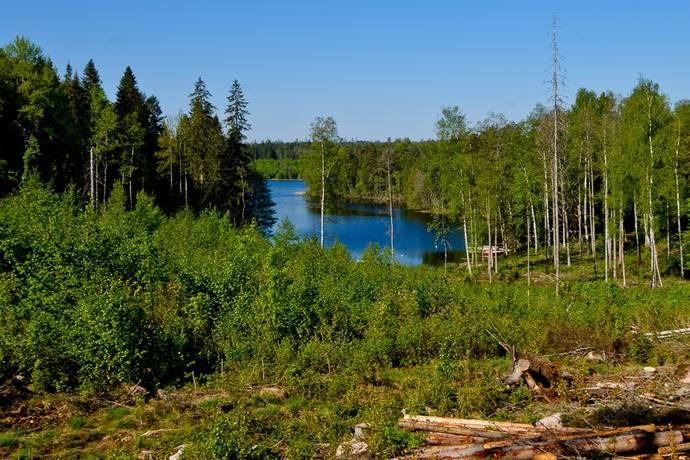 Bild: tomt på Holmen 6C, Nässjö kommun Stensjön
