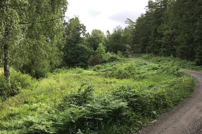 Bild: tomt på Lövås 145, Orust kommun Henån - Lövås