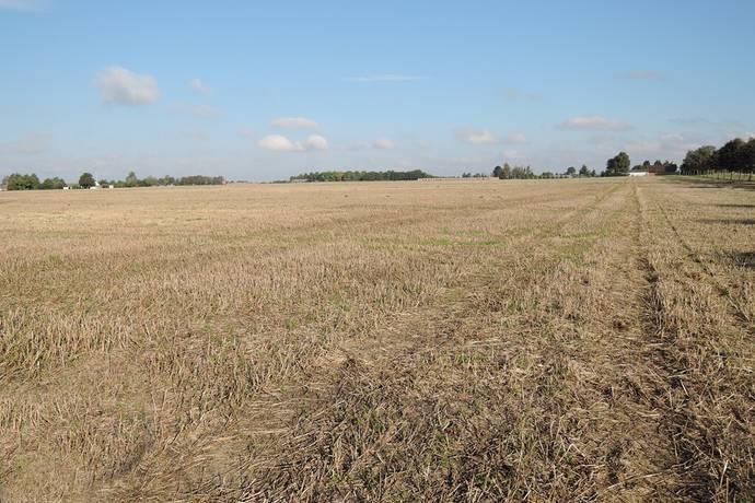 Bild: gård/skog på Torreberga Arrende, Staffanstorps kommun Staffanstorp
