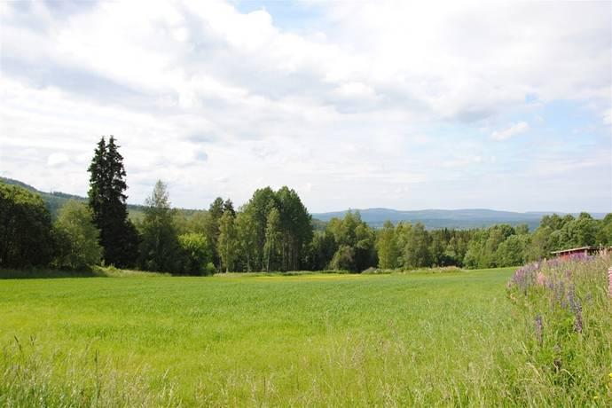 Bild: tomt på Sturmasgattu, Leksands kommun