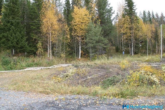 Bild: tomt på Arksjövägen, Dorotea kommun Borgafjäll