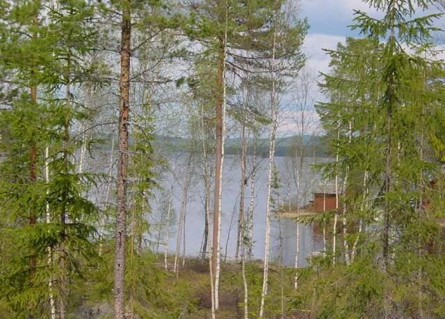 Bild: tomt på Ljugaren, Rättviks kommun Rättvik Ljugaren