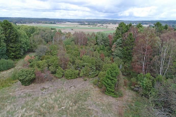 Bild: gård/skog på Rävsnäs, Kungsbacka kommun