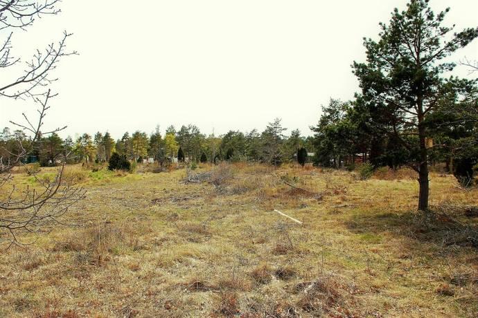 Bild: tomt på Bunge Sandviksvägen 31, Gotlands kommun Gotland