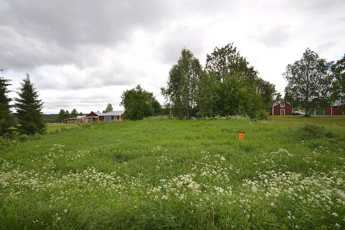 Bild: tomt på Tomt Månsbyn, Kalix kommun Månsbyn - Stråkanäs