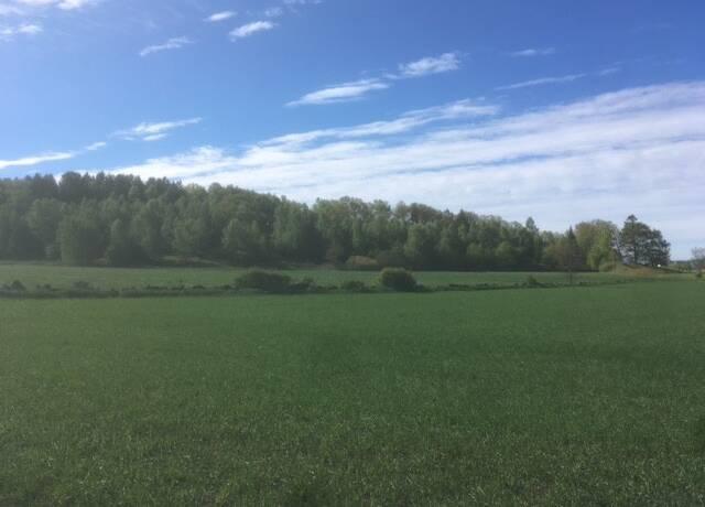 Bild: gård/skog på Vallby-Veddige, Varbergs kommun Veddige