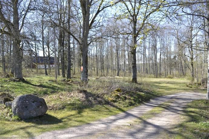 Bild: tomt på Ökna, Vetlanda kommun