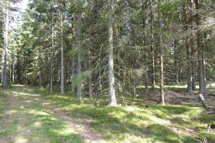 Bild: gård/skog på Jord och skogsfastighet, Ulricehamns kommun Kärråkra